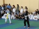 olimpiada taekwondo 2011 Zabrze